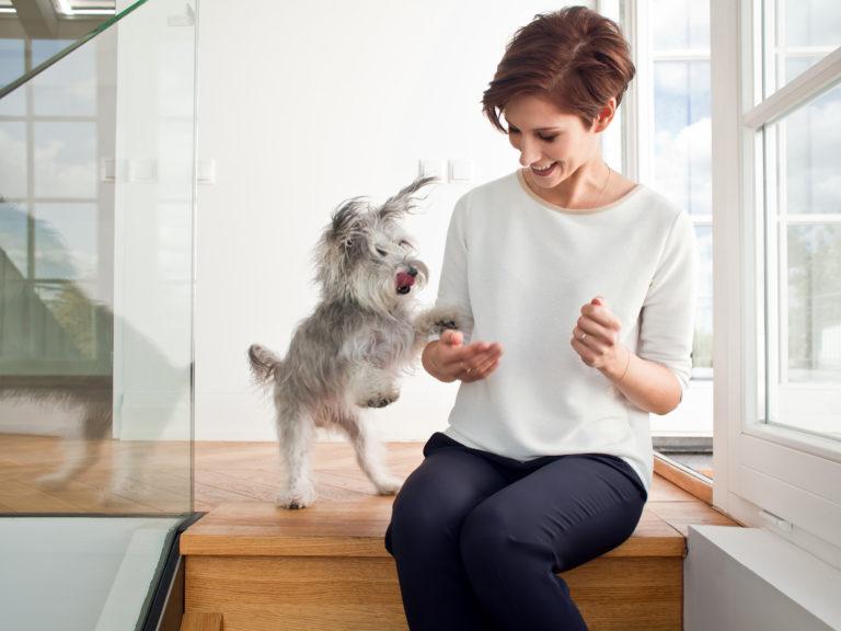 Karolina Hołda – dietetyk psów i kotów
